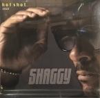 HOT SHOT 2020 SHAGGY POP/ROCK zene LP vásárlás